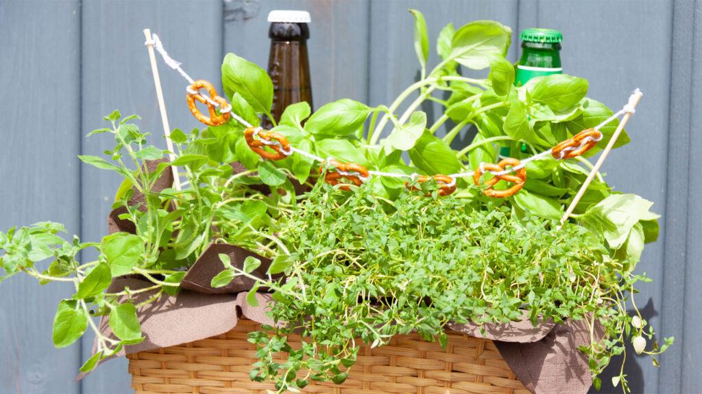 DIY Geschenk für Männer – der Mini-Biergarten